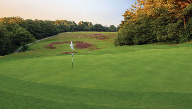 Addington Court Golf Club Surrey English Golf Courses