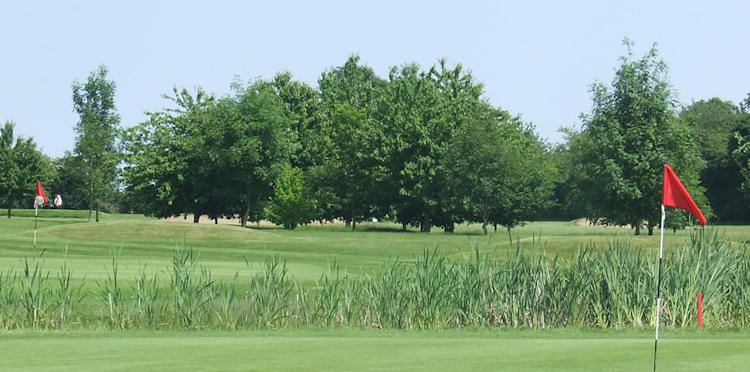 Fynn Valley Golf Club