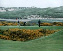Newburgh on Ythan Golf Club