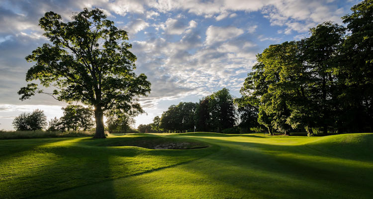 Badgemore Park Golf Club