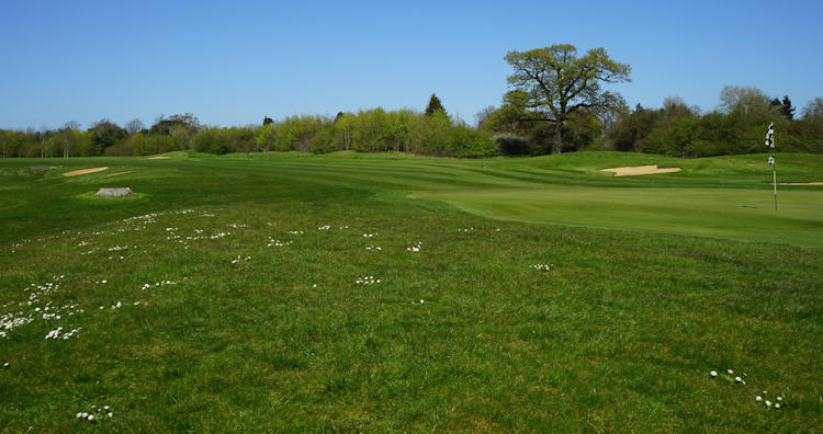Bedford Golf Club (The)
