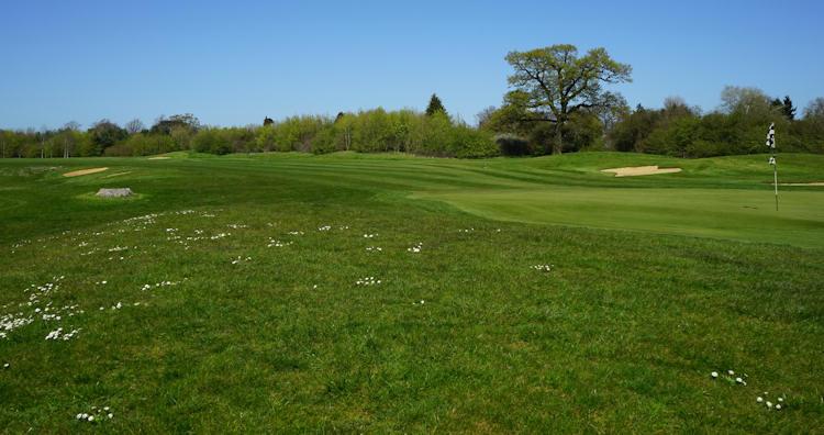 Bedford Golf Club (The)