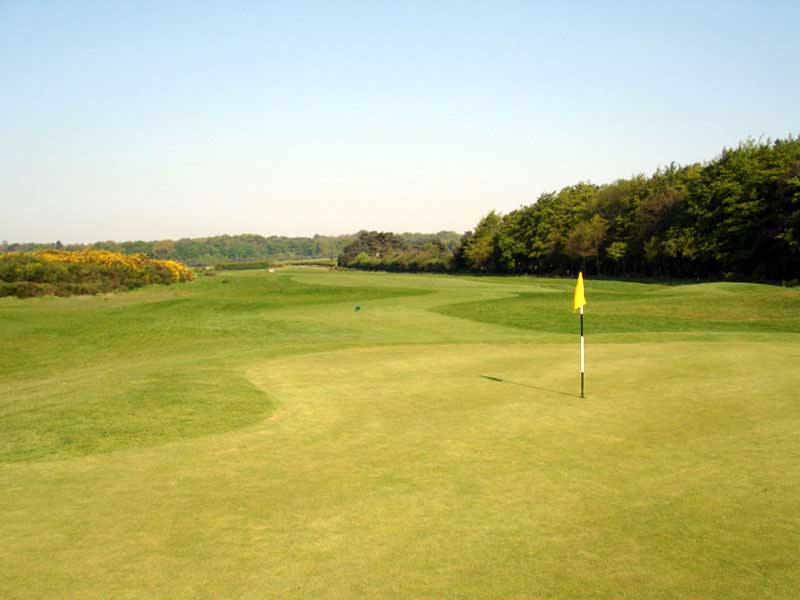 College Pines Golf Club