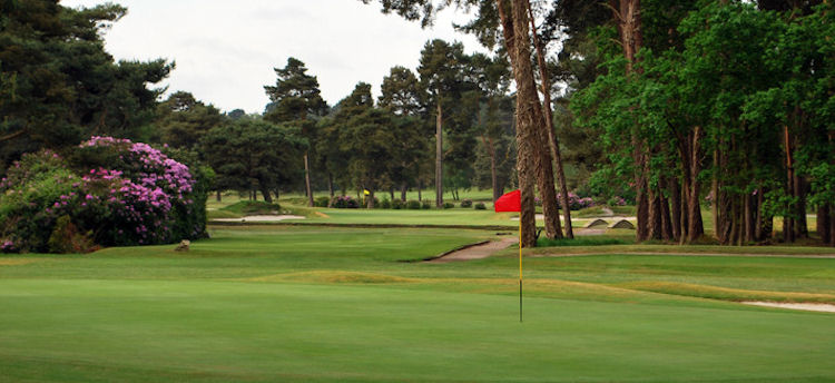 Ferndown Golf Club