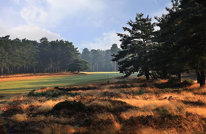 Hankley Common Golf Club