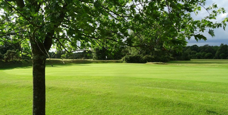 New Forest Golf Club