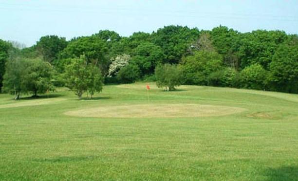 petworth golf club sussex english golf courses. Black Bedroom Furniture Sets. Home Design Ideas
