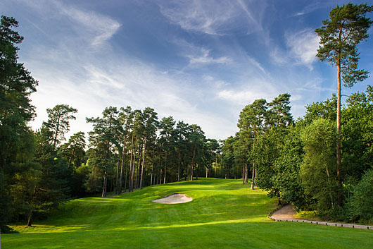 Image result for pine ridge golf course surrey