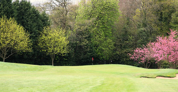 Shendish Manor Hotel and Golf Course