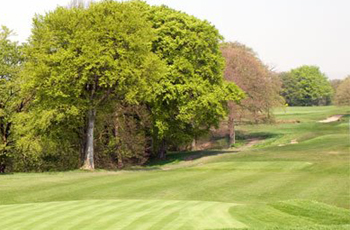 Springfield Park Golf Club