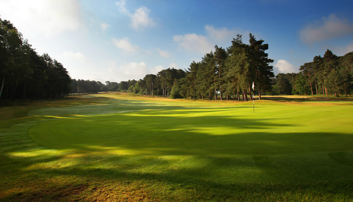 St George s Hill Golf Club