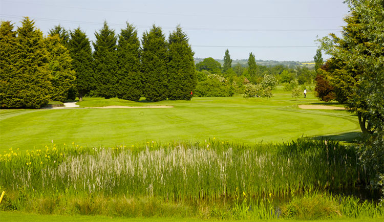 Top Meadow Golf Club