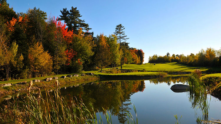 Queenwood Golf Club Surrey English Golf Courses
