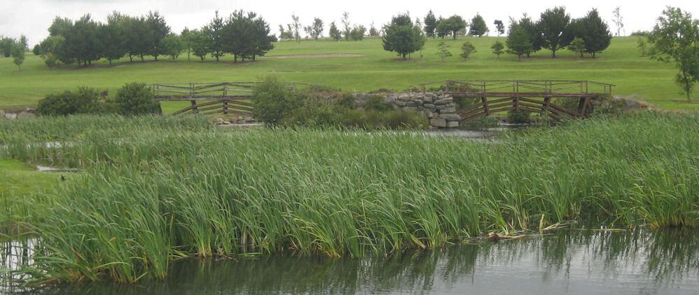 Mountain View Golf Club
