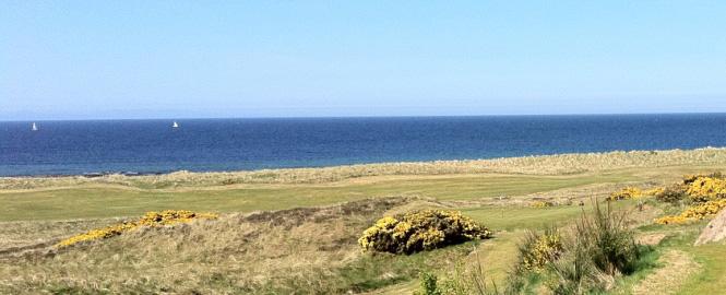 Covesea Links