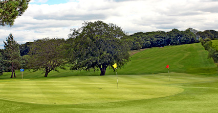 Mount Ellen Golf Club